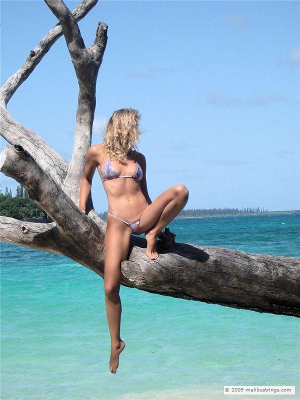 Malibustrings Com Bikini Competition Sofyly Gallery 3