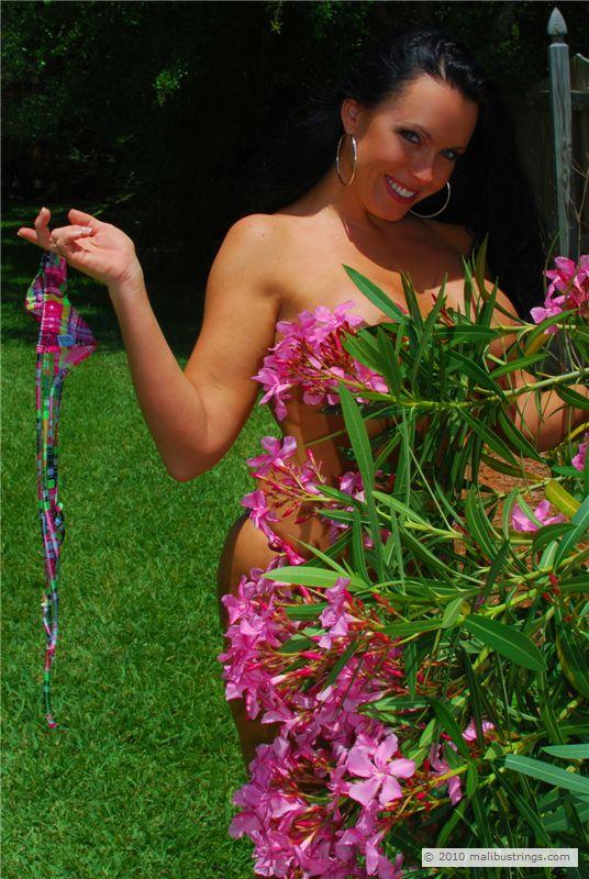 Malibustrings Com Bikini Competition Tonya Gallery 1